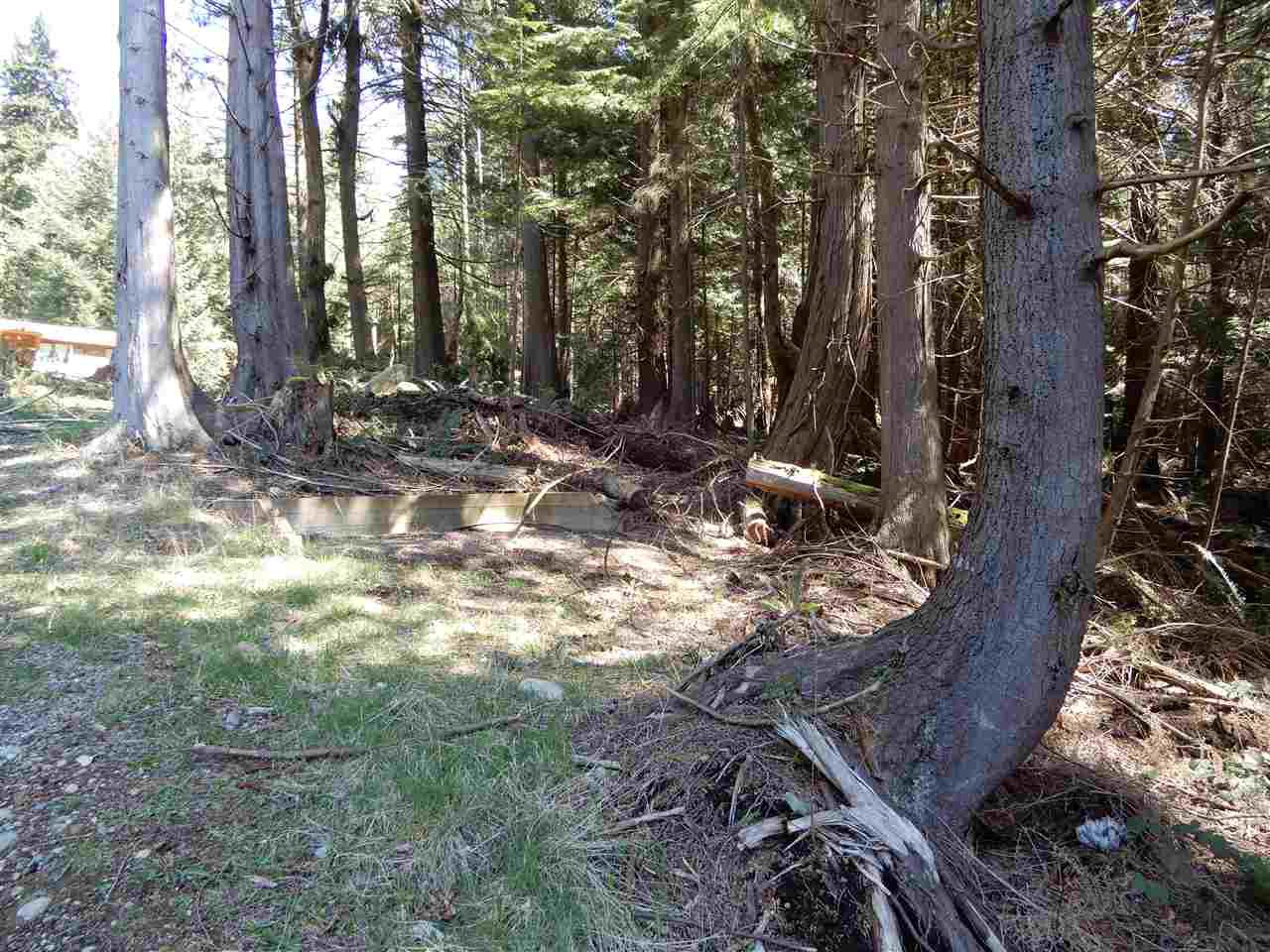 "Photo 4: Photos: LOT 3 FORIN ROAD: Keats Island Land for sale in ""EASTBOURNE"" (Sunshine Coast)  : MLS®# R2459870"