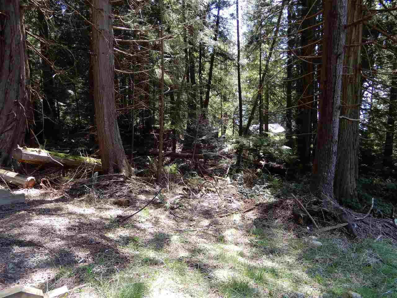 "Photo 8: Photos: LOT 3 FORIN ROAD: Keats Island Land for sale in ""EASTBOURNE"" (Sunshine Coast)  : MLS®# R2459870"