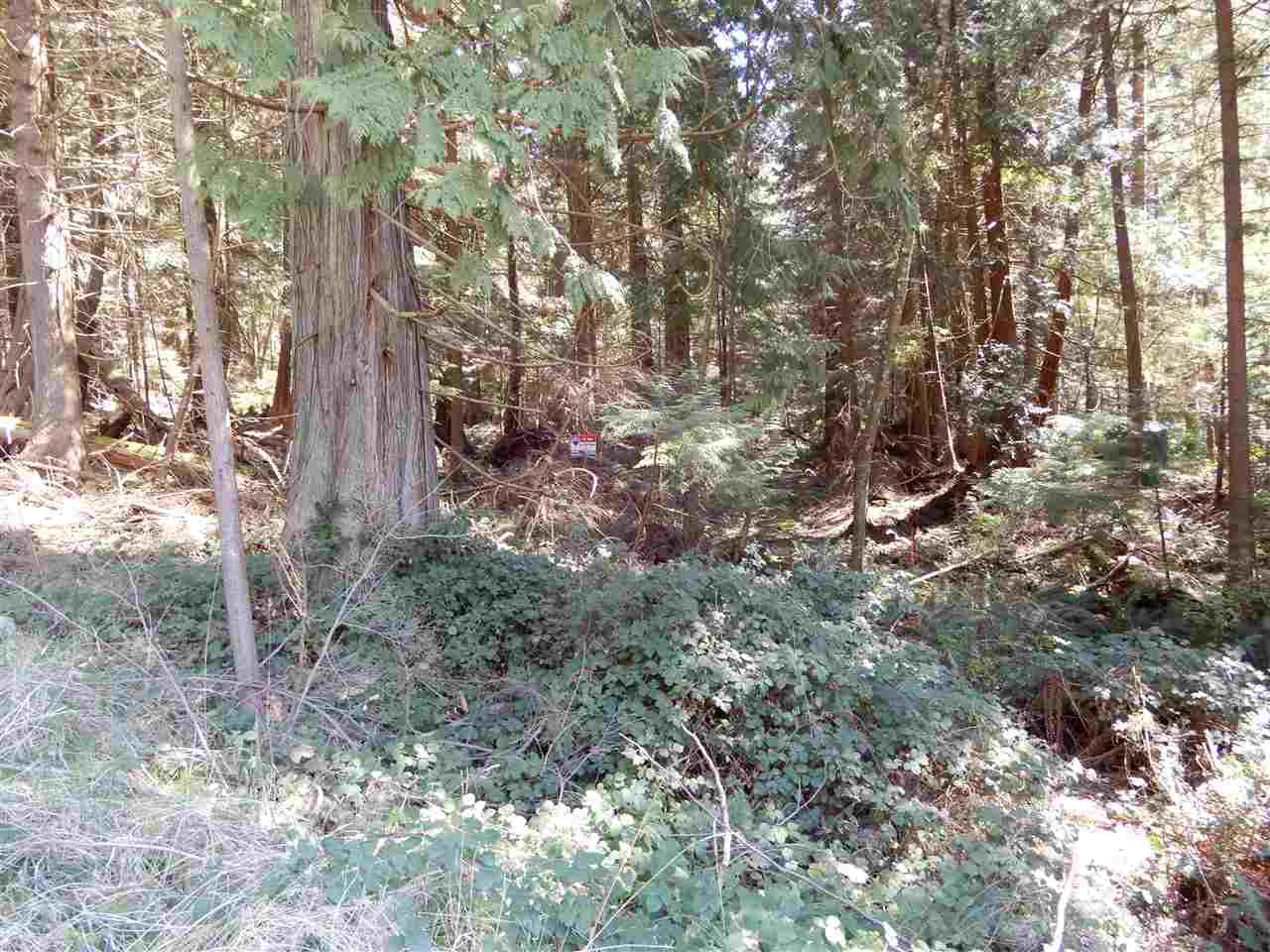 "Photo 5: Photos: LOT 3 FORIN ROAD: Keats Island Land for sale in ""EASTBOURNE"" (Sunshine Coast)  : MLS®# R2459870"