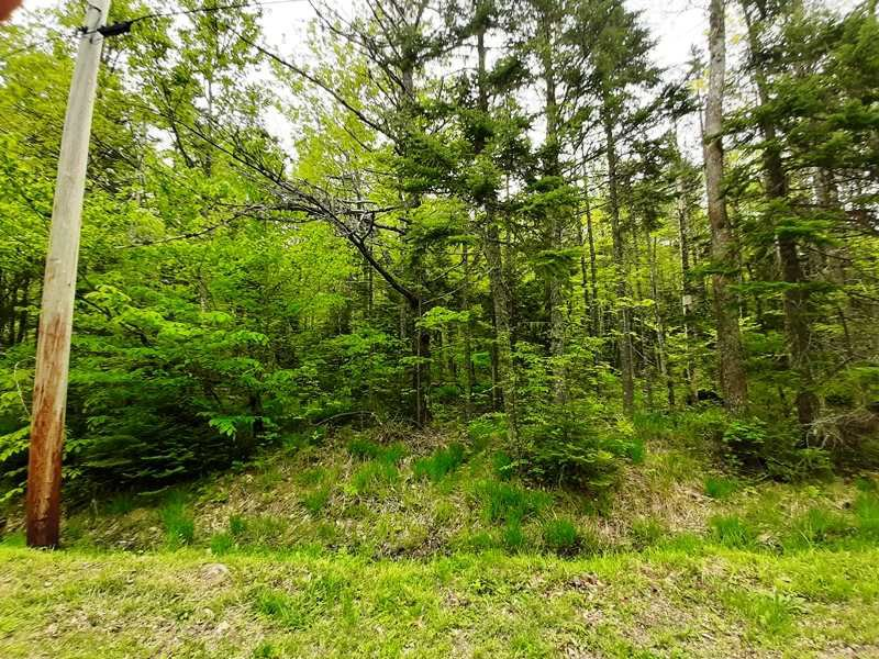 Main Photo: Lot N1 Nature Heaven Road in Lake Paul: 404-Kings County Vacant Land for sale (Annapolis Valley)  : MLS®# 202009523