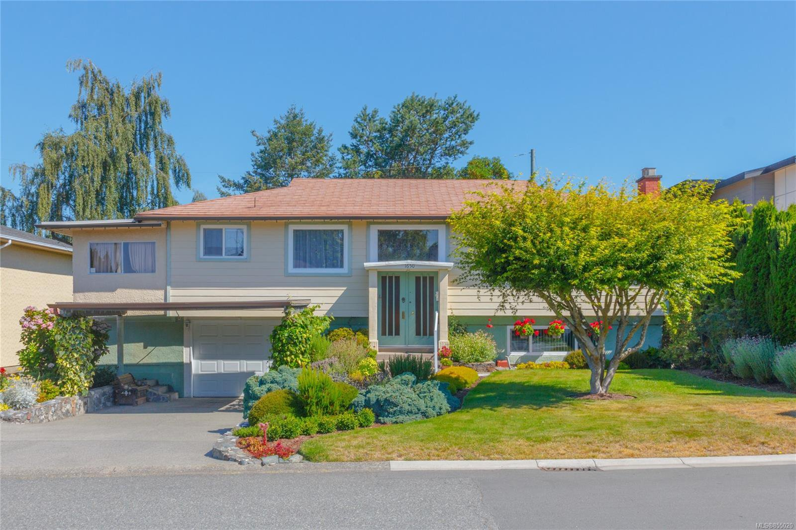Main Photo: 1650 Alderwood St in : SE Lambrick Park House for sale (Saanich East)  : MLS®# 855020