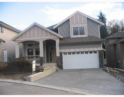 Main Photo: 19172 117A Ave in Pitt Meadows: Central Meadows House for sale : MLS®# V619715