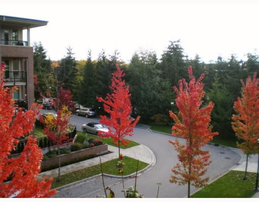 """Main Photo: 319 6279 EAGLES Drive in Vancouver: University VW Condo for sale in """"REFLECTIONS"""" (Vancouver West)  : MLS®# V793983"""