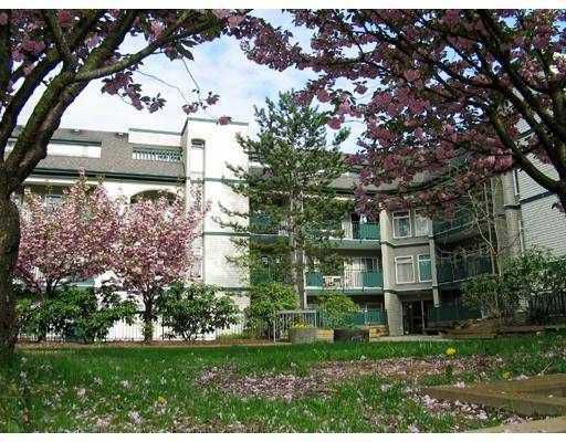 """Main Photo: 211 1190 PACIFIC Street in Coquitlam: North Coquitlam Condo for sale in """"PACIFIC GLEN"""" : MLS®# V690379"""