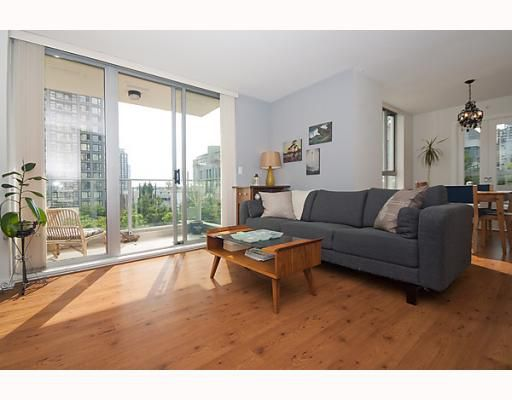 """Main Photo: # 408 1225 RICHARDS ST in Vancouver: Downtown VW Condo for sale in """"THE EDEN"""" (Vancouver West)  : MLS®# V778716"""