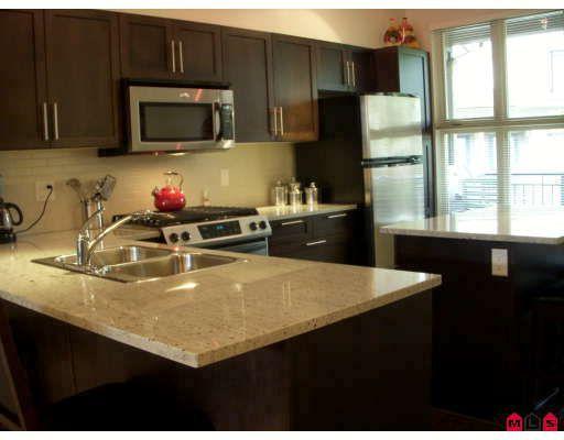Main Photo: # 33 20326 68TH AV in Langley: Condo for sale : MLS®# F2909936
