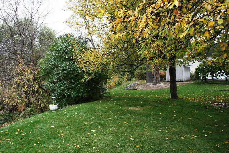 Photo 13: Photos: 1284 Wolseley Ave./ Wolseley in Winnipeg: West End / Wolseley Single Family Detached for sale (West Winnipeg)  : MLS®# 2822167