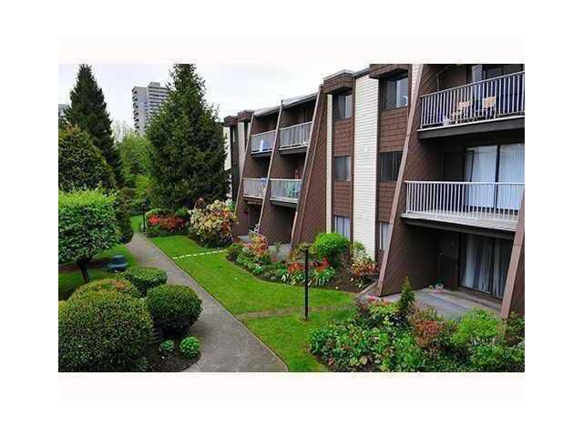 Main Photo: # 214 3911 CARRIGAN CT in Burnaby: Government Road Condo for sale (Burnaby North)  : MLS®# V825401