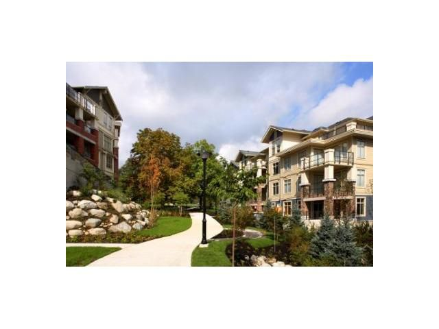 """Main Photo: # 104 245 ROSS DR in New Westminster: Fraserview NW Condo for sale in """"GROVE AT VICTORIA HILL"""" : MLS®# V904803"""