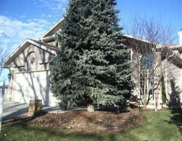 Main Photo:  in CALGARY: McKenzie Lake Residential Detached Single Family for sale (Calgary)  : MLS®# C3192761