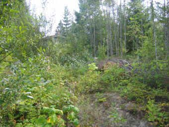 This is your chance to own a beautiful building lot near the Shushwap Lake.  Service subdivision with many nice homes.  Hold an build your dream home.