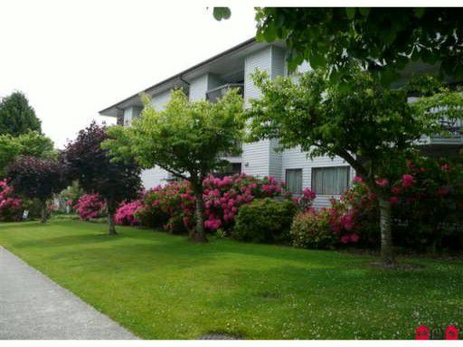 """Main Photo: 303 15290 THRIFT Avenue: White Rock Condo for sale in """"WINDERMERE"""" (South Surrey White Rock)  : MLS®# F1006345"""