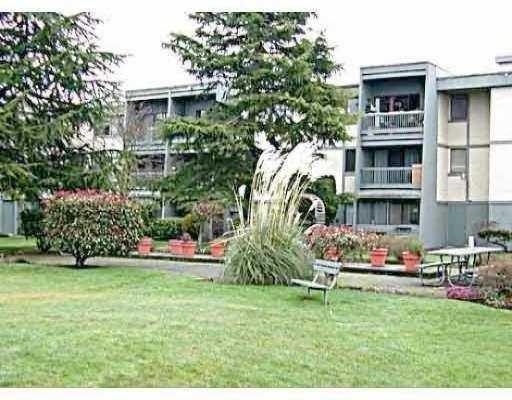 "Main Photo: 323 3451 SPRINGFIELD DR in Richmond: Steveston North Condo for sale in ""STEVESTON NORTH"" : MLS®# V533554"