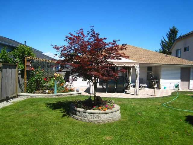 Photo 2: Photos: 23152 125A Avenue in Maple Ridge: East Central House for sale : MLS®# V860013
