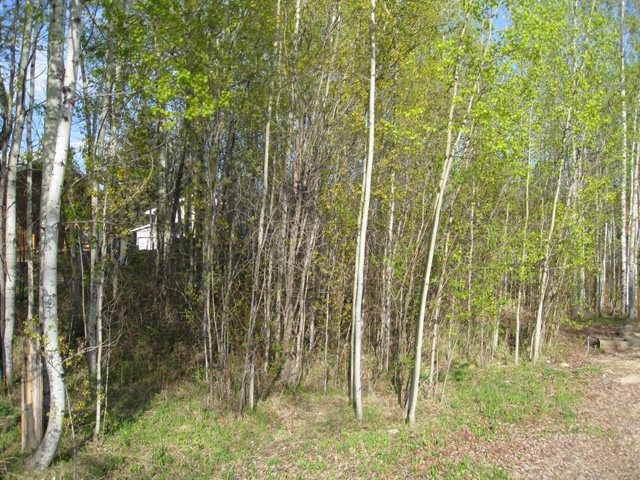 Main Photo: 1808 Cove Crescent: Rural Lac Ste. Anne County Rural Land/Vacant Lot for sale : MLS®# E4055623