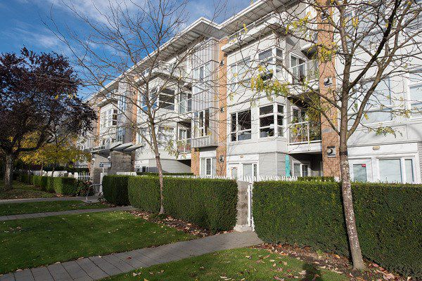 """Main Photo: 205 6198 ASH Street in Vancouver: Oakridge VW Condo for sale in """"THE GROVE"""" (Vancouver West)  : MLS®# R2115626"""
