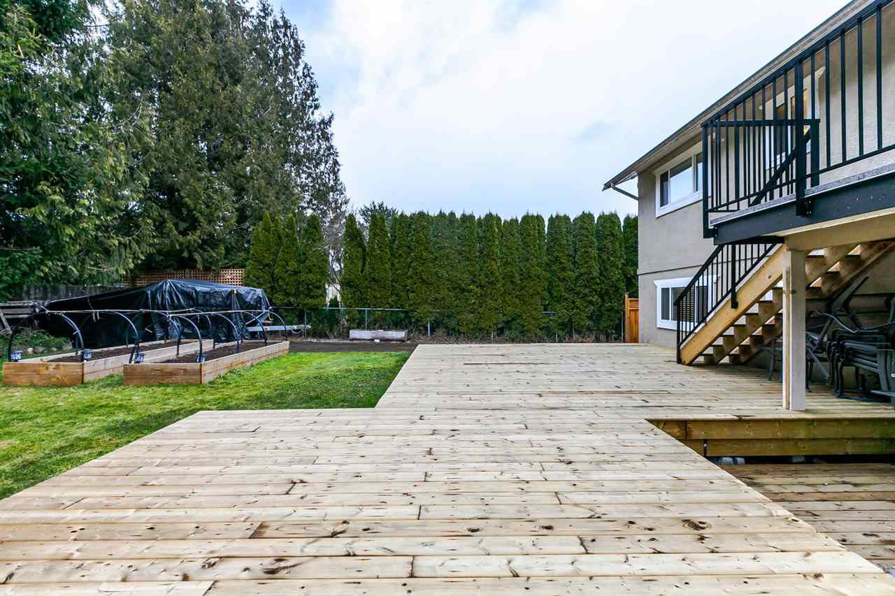 Photo 19: Photos: 21895 44 Avenue in Langley: Murrayville House for sale : MLS®# R2135391