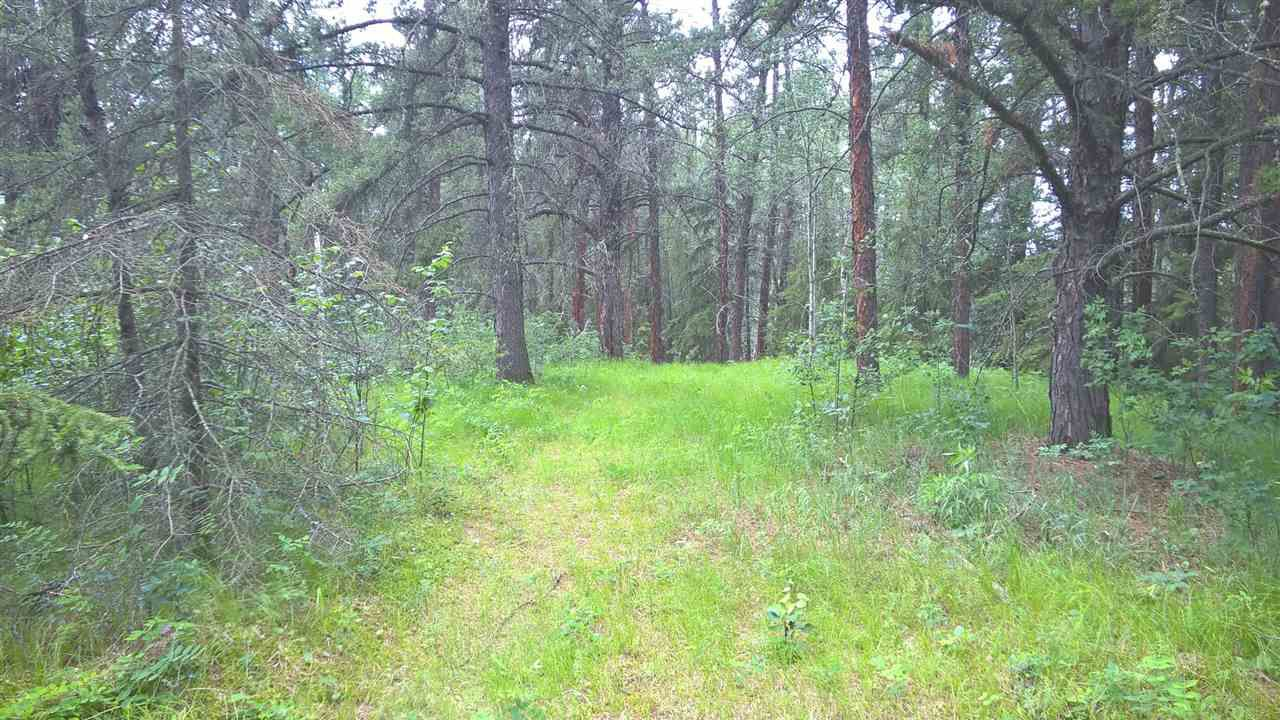 Main Photo: 51410 RGE RD 271: Rural Parkland County Rural Land/Vacant Lot for sale : MLS®# E4134857