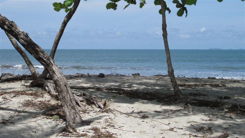 Main Photo:  in Boca Chica: Home for sale (Chiriqui)