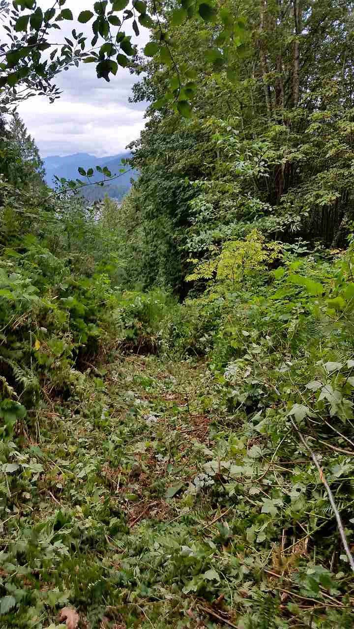 """Photo 13: Photos: LOT 55 N GALE AVENUE in Sechelt: Sechelt District Home for sale in """"WEST PORPOISE BAY"""" (Sunshine Coast)  : MLS®# R2066398"""