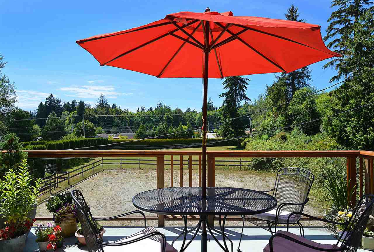 Photo 15: Photos: 5688 MASON Road in Sechelt: Sechelt District House for sale (Sunshine Coast)  : MLS®# R2085291