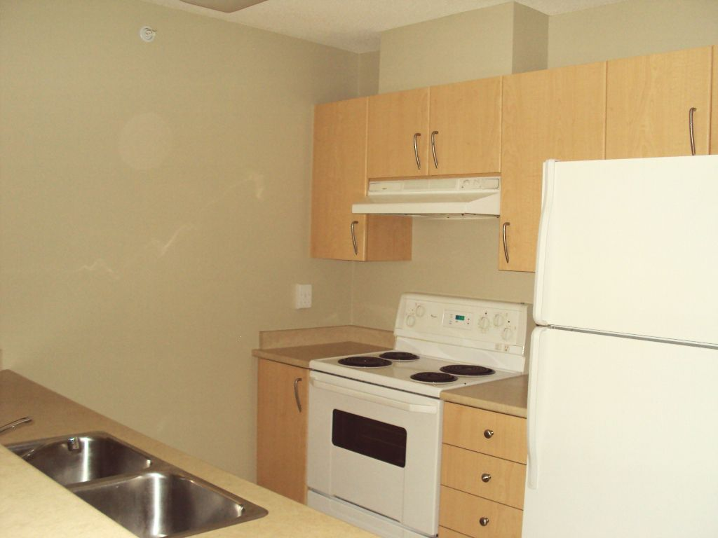 """Photo 7: Photos: 503 3520 Crowley Drive in Vancouver: Collingwood VE Condo for sale in """"MILENIO"""" (Vancouver East)  : MLS®# V881903"""