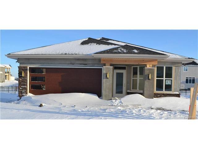 Main Photo: 47 Cherrywood Road in Winnipeg: Bridgwater Trails Residential for sale (1R)  : MLS®# 1630971