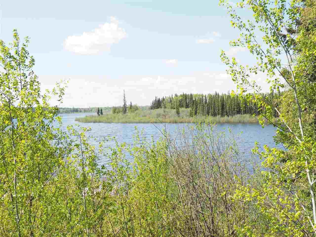 Lake/Creek mouth view
