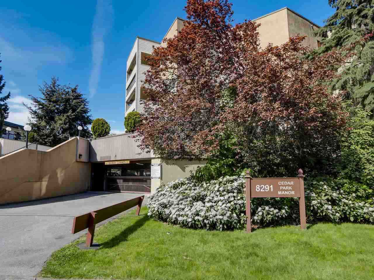 "Main Photo: 211 8291 PARK Road in Richmond: Brighouse Condo for sale in ""CEDAR PARK MANOR"" : MLS®# R2090269"