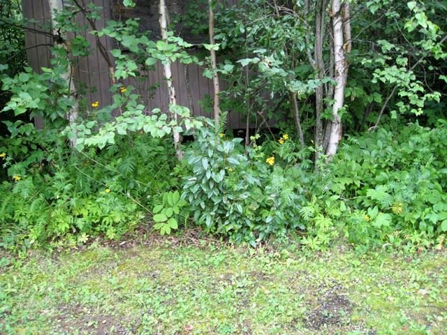 Main Photo: 215 4224 Twp Rd 545: Rural Lac Ste. Anne County Rural Land/Vacant Lot for sale : MLS®# E4094928