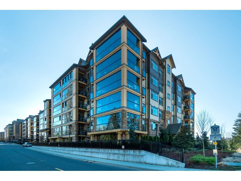 "Main Photo: 529 8157 207 Street in Langley: Willoughby Heights Condo for sale in ""Yorkson Creek"" : MLS®# R2354410"