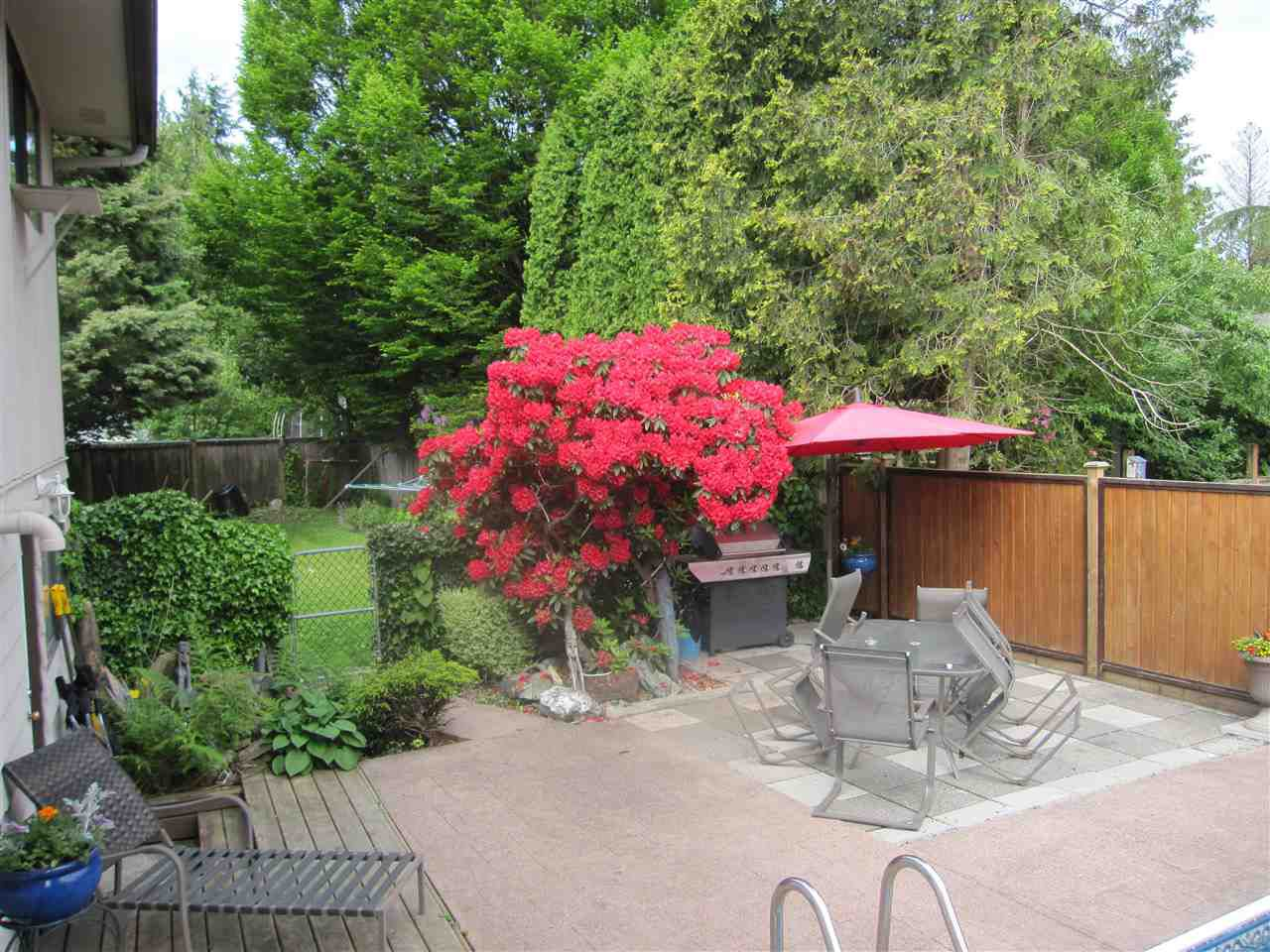 Photo 16: Photos: 21801 DOVER Road in Maple Ridge: West Central House for sale : MLS®# R2369715