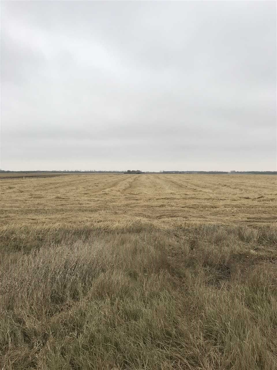 Main Photo: RR 260 Twp Rd 564: Rural Sturgeon County Rural Land/Vacant Lot for sale : MLS®# E4132065