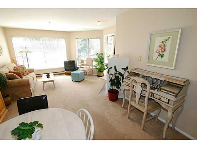 Main Photo: # 212 1869 SPYGLASS PL in Vancouver: False Creek Condo for sale (Vancouver West)  : MLS®# V1005368