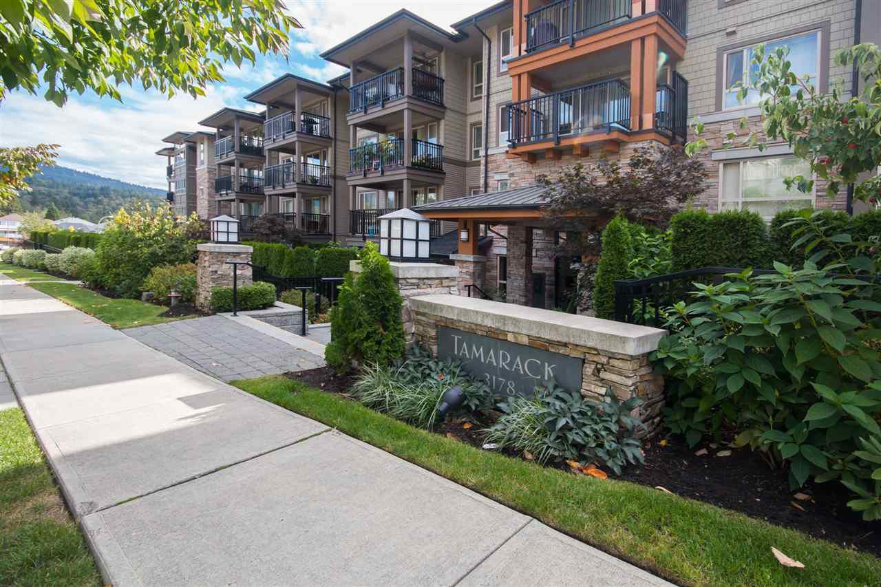 """Main Photo: 217 3178 DAYANEE SPRINGS BL in Coquitlam: Westwood Plateau Condo for sale in """"DAYANEE SPRINGS BY POLYGON"""" : MLS®# R2107496"""