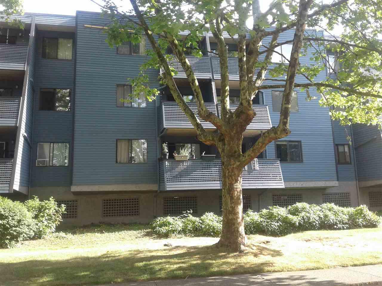 "Main Photo: 205 5906 176A Street in Surrey: Cloverdale BC Condo for sale in ""Wyndham Estates"" (Cloverdale)  : MLS®# R2282384"