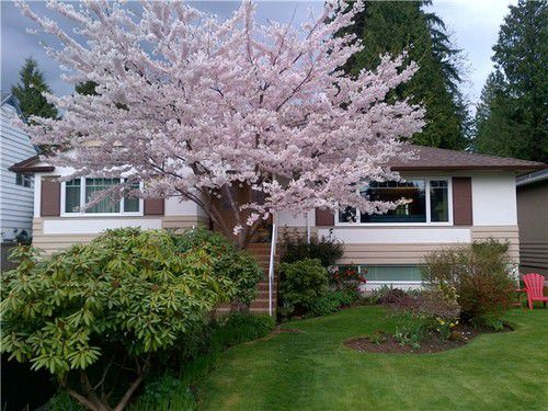 Main Photo: 2792 HOSKINS Road in North Vancouver: Home for sale : MLS®# V1100303