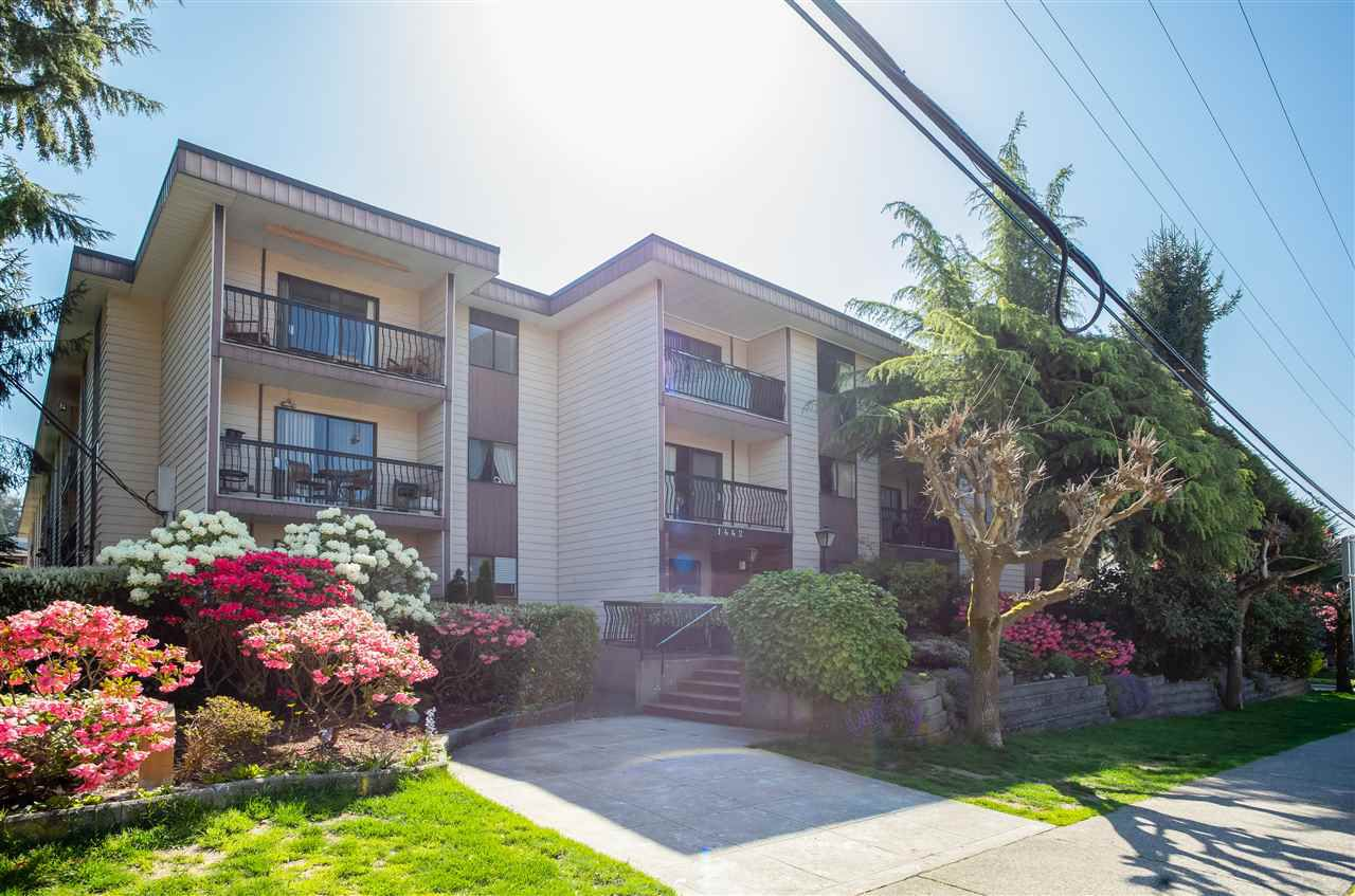 """Main Photo: 315 1442 BLACKWOOD Street: White Rock Condo for sale in """"BLACKWOOD MANOR"""" (South Surrey White Rock)  : MLS®# R2262391"""