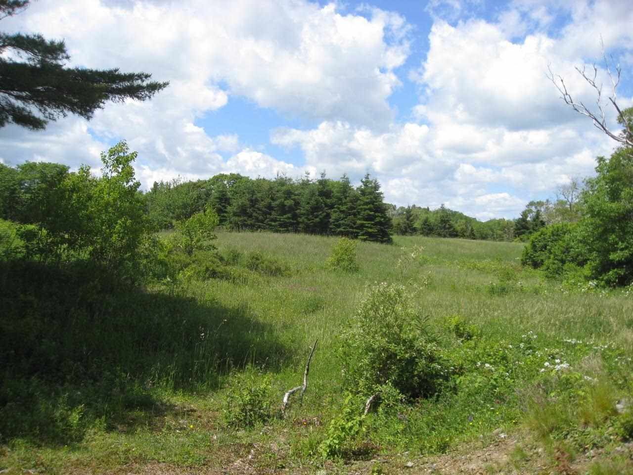 Photo 2: Photos: Lot 1-BC Borgels Drive in Chester Basin: 405-Lunenburg County Vacant Land for sale (South Shore)  : MLS®# 201615695