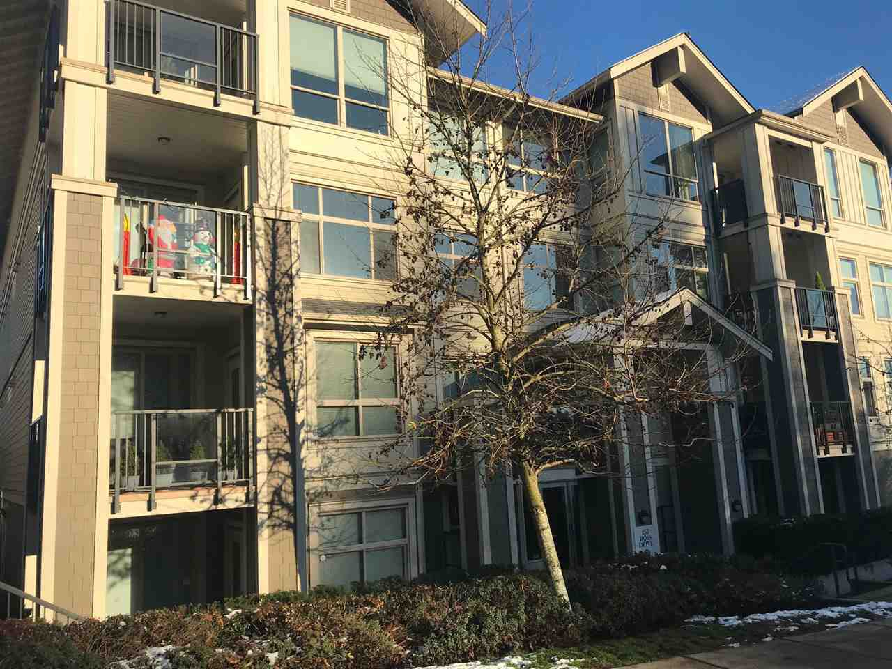 """Main Photo: 302 265 ROSS Drive in New Westminster: Fraserview NW Condo for sale in """"THE GROVE AT VICTORTIA HILL"""" : MLS®# R2229036"""
