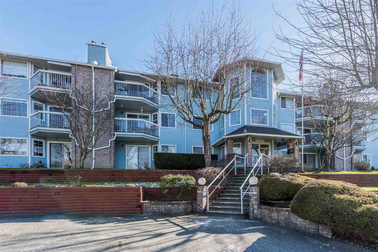"""Main Photo: 202 11510 225 Street in Maple Ridge: East Central Condo for sale in """"RIVERSIDE"""" : MLS®# R2241456"""