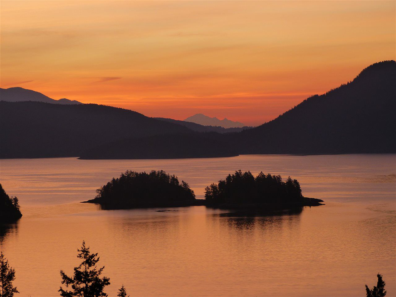 """Main Photo: 1626 GRADY Road in Gibsons: Gibsons & Area House for sale in """"Langdale"""" (Sunshine Coast)  : MLS®# R2298602"""
