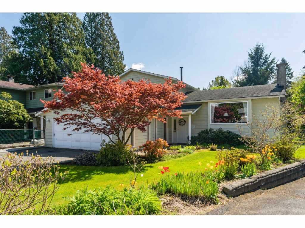 Main Photo: 20890 HUNTER Place in Maple Ridge: Southwest Maple Ridge House for sale : MLS®# R2365265