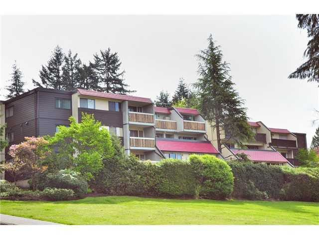 """Main Photo: 5 1811 PURCELL Way in North Vancouver: Lynnmour Condo for sale in """"LYNNMOUR SOUTH"""" : MLS®# V1091633"""