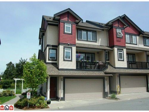 Main Photo: 9 7168 179TH Street in Cloverdale: Home for sale : MLS®# F1205320