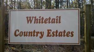Main Photo: 48076 RR 273: Rural Leduc County Rural Land/Vacant Lot for sale : MLS®# E4144148