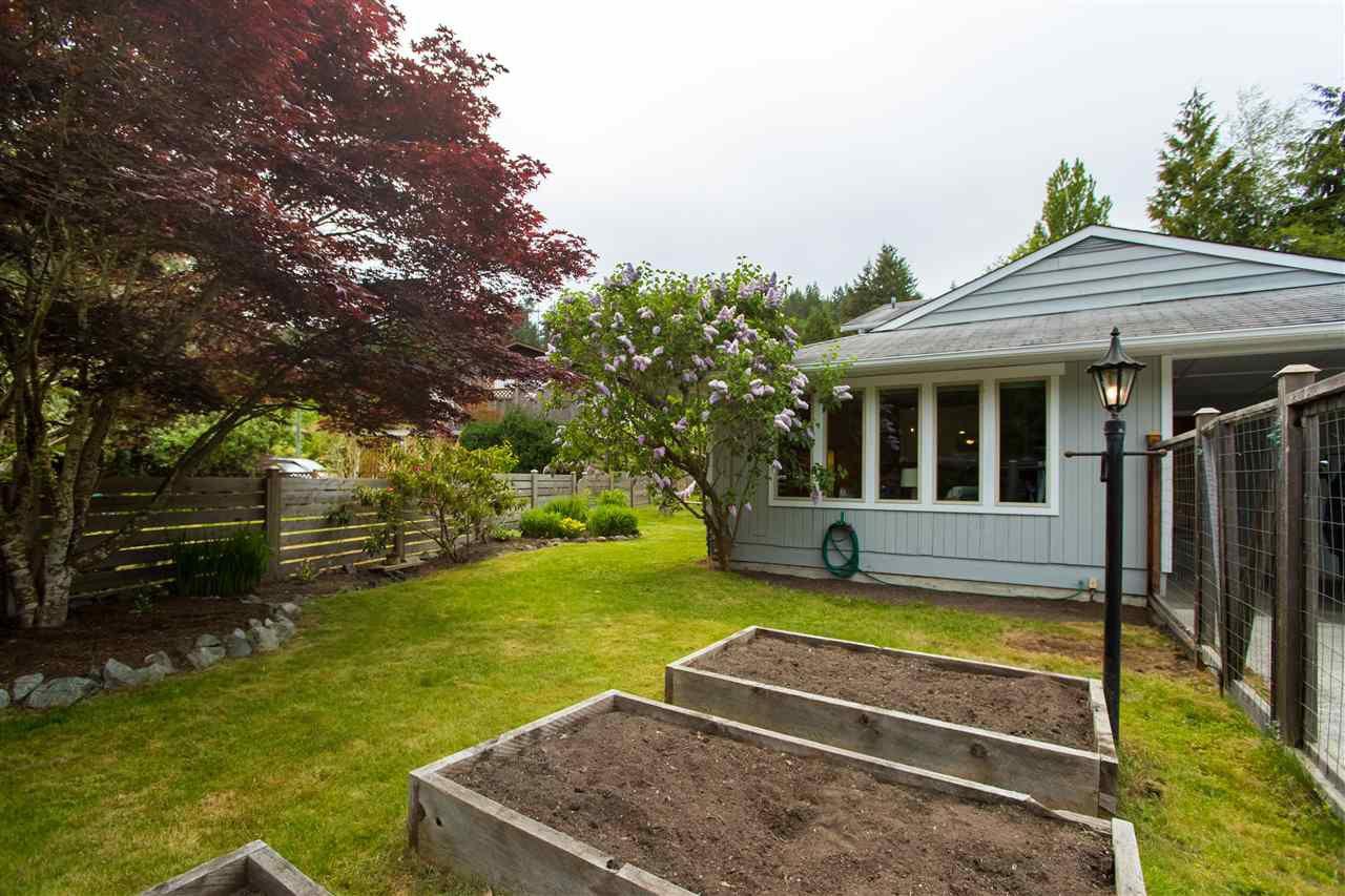 Front yard garden beds
