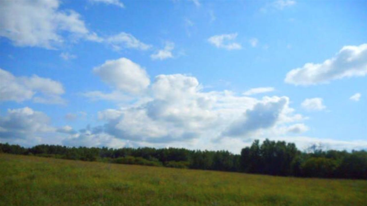Main Photo: TWP 534 RR 112: Rural Two Hills County Rural Land/Vacant Lot for sale : MLS®# E4109687