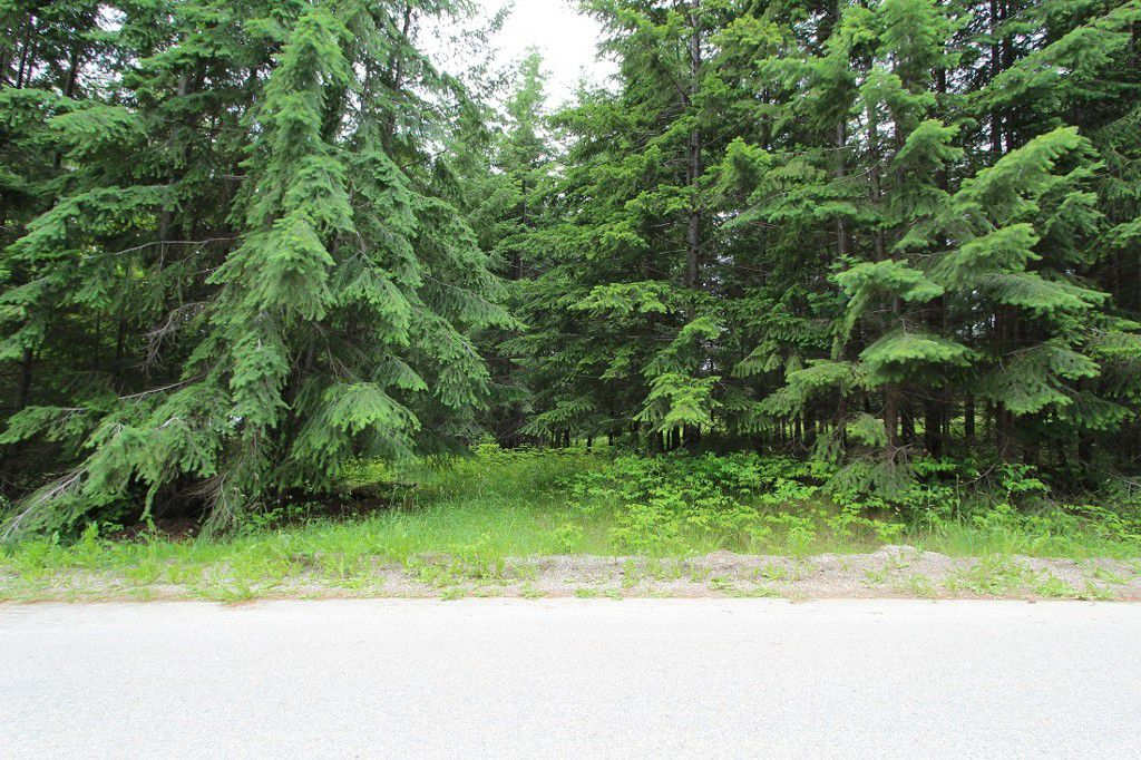Main Photo: 108 Airstrip Road in Anglemont: North Shuswap Land Only for sale (Shuswap)  : MLS®# 10067018