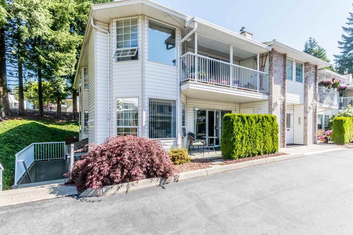 """Main Photo: 7 2921 HORN Street in Abbotsford: Central Abbotsford Townhouse for sale in """"Birchwood Terrace"""" : MLS®# R2183526"""